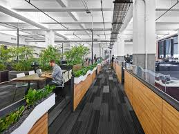 Bringing nature to the workplace. Biophilia: humans innate desire to connect with nature